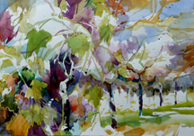 Jean Warren Viogner Vines Midsized Thumbnail